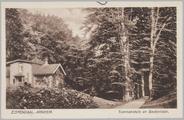 5341 Zijpendaal - Arnhem, Tuinmanshuis en Beukenlaan, ca. 1915