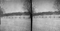 13729 Winteropnames Sonsbeek, 1900-1910