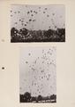 8-0014 GEWAB, 02-07-1958