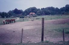 1313 Hertshoornstraat, 1990 - 2000