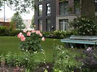 4229 Woningen Rodenburgstraat, 02-07-2021
