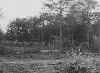 0738 Natuurgebied Ringkampsbulten