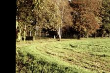 060 Landgoed Landfort, dia