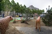 11710 Provinciebezoek Willem-Alexander en Maxima, 30-05-2013