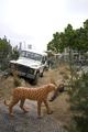 11711 Provinciebezoek Willem-Alexander en Maxima, 30-05-2013