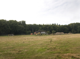 11945 Oosterbeek, 08-09-2013