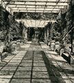 1041 Angerenstein, ca. 1900