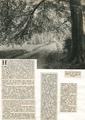 1043 Angerenstein, ca. 1900