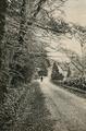 1044 Angerenstein, ca. 1900