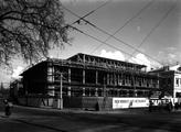 18545 Willemsplein, 1953
