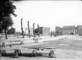 7893 Markt, 1954