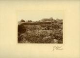 2216 De bodem van Winterswijk, 1911 - 1922