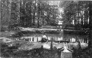 1711 Oosterbeek, De Oorsprong, 1906