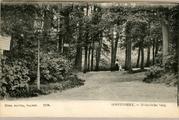 1950 Oosterbeek, - Hemelsche berg, 1910-1920