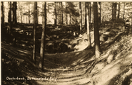 1951 Oosterbeek, De Hemelsche Berg, 1930-1940