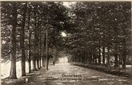2992 Oosterbeek Utrechtsche straatweg bij Zonneberg, 1905-1910