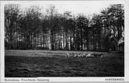 3057 Hertenkamp, Utrechtsche Straatweg Oosterbeek, 1915-1920