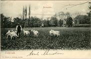 3070 Hertenstein Oosterbeek, 1905-1910