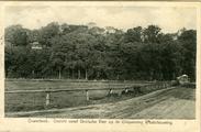 3165 Oosterbeek. Gezicht vanaf Drielsche veer op de Uitspanning Westerbouwing, 1910-1920