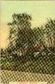 3372 Zweiersdal - Oosterbeek, 1910-1930