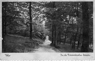 1237 Velp, In de Rozendaalse bossen, 1920-1950