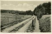 2063 De Steeg, Naar de Carolinahoeve, 1920-1930