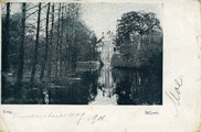239 Velp, Biljoen, 1901