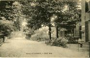 3177 Groet uit Dieren, Zutf. weg, 1900-1930