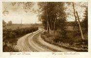 2062 Groet uit Dieren, Weg naar Carolinahoeve, 1931-09-02