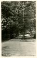 4119 Velp, Weg naar de Zijpenberg, 1947