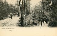 4121 Groete uit Beekhuizen, 1900-1910