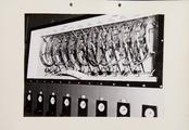 9-0036 GEWAB, 00-00-1959