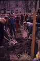 1568 Eiland, 1980-1985