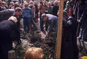 1569 Eiland, 1980-1985