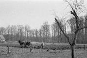 8606 J.P. Heijestichting, 27-03-1947