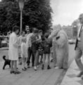2979 Arnhem, Oude Stationsstraat, 1965