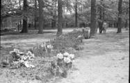 391 Arnhem verwoest, 1940