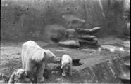455 Arnhem verwoest, 1940