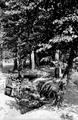 111 Bovenover, 1945