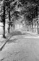 226 FOTOCOLLECTIES - DRIESSEN / RAAYEN, 1945