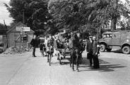 530 FOTOCOLLECTIES - DRIESSEN / RAAYEN, 1945