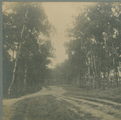 3132 Berkenbos, 1910 - 1940