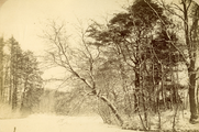 418 Landgoed Biljoen, 1890 - 1910