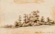 3787 Eikenboschje -Brantsen-boschje-Hulkestein, 1868