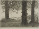 4054-0006 De Duno bij Heveadorp, ca. 1900-1927