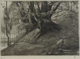 4054-0008 De Duno bij Heveadorp, ca. 1900-1927