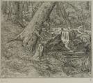 4054-0009 De Duno bij Heveadorp, ca. 1900-1927