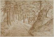 4055-0007 Het park - boschpad bij de oude sprengen - 1907, 1907