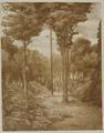 4055-0012 Het park - boschgezicht - 1909, 1909
