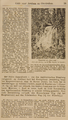 1505-III-46D5rood-0018 Waterval op Sonsbeek, 1896